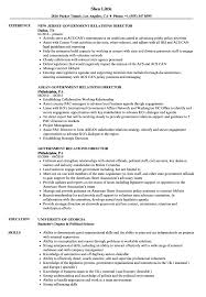 Government Resume Sample Government Relations Director Resume Samples Velvet Jobs 12