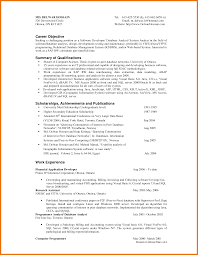 Interesting Programmer Resume Summary For Your Resume Format Puter