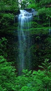 Green Nature Wallpaper Iphone - free ...