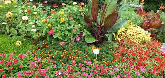 3rd place clark botanic garden albertson new york