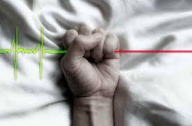 sample resume of a fresh graduate nurse dbq apush essay essay on mercy killing fcmag ru don t forget to study a sample argumentative euthanasia essay