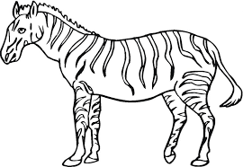 Zebra Coloring Sheet Pages Zebraloring Sheets For Preschoolers