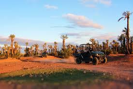 buggy in marrakech desert palmgrove