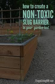 get rid of slugs gardening