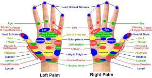 Reflexology Chart Hands And Feet Holistic Hernia Remediation