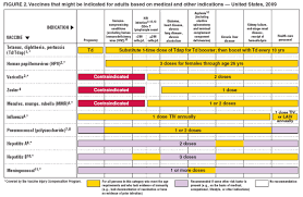 Recommended Adult Immunization Schedule United States 2009