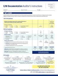 Chart Audit Tool Namas E M Audit Tool