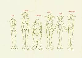 Female Body Types Chart Female Body Shape Drawing At Getdrawings Com Free For