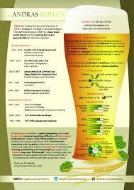 Beer CV Infographic