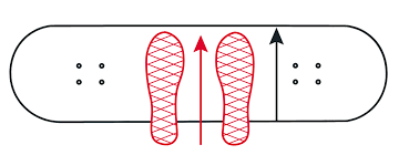 Skateboard Length And Width Chart Everything About Skateboard Decks Wiki Skatedeluxe Blog