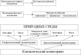 Реферат Экологический мониторинг com Банк рефератов  Экологический мониторинг