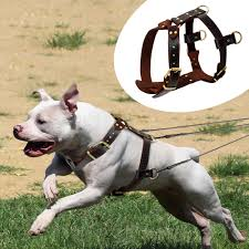 details about real genuine leather dog harnesses soft heavy duty dog vest for pitbull boxer
