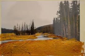 this images are of oil on acetate over photographs i m intending on painting the