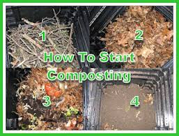How To Start A Compost Bin At Home