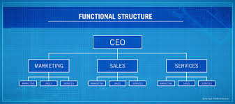 Ge Organizational Chart 4 Types Of Organizational Structures Point Park Online