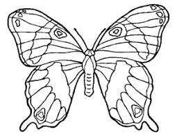 Click on butterfly coloring pictures below to go to the printable butterfly coloring page. Butterflies Free Printable Coloring Pages For Kids