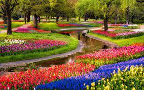 Flower Garden Wallpapers - Top Free ...