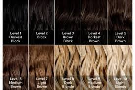 Sample Hair Colors Chart A Hair Color Chart To Get Glamorous Results At Home Hair