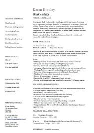 curriculum vitae layout template curriculum vitae sample template