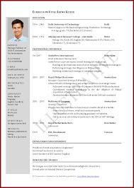 Curriculum Vitae Sample Pdf File International Resume Format Doc