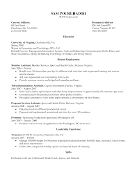 Art Gallery Resume Sample Cool Sample Resume Art Gallery Gallery Example Resume And Template 9