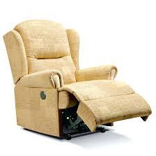 Riser Recliner Chairs Amazon