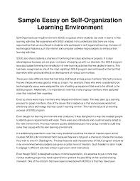 example of a essay co example of a essay sample essay on self organization learning environment