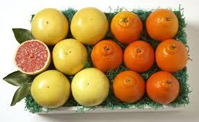 honeybells and gfruit