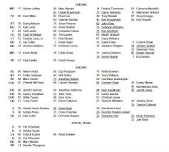 Bears Depth Chart 2016