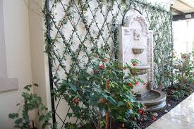 Small Picture Download Wall Trellis Ideas Solidaria Garden