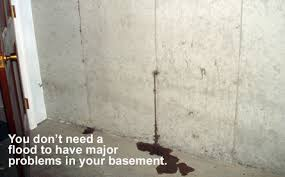Fantastic How To Get Rid Of Black Mold In Basement To Remove Mold In Basement