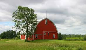 Image result for barns