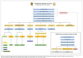 Amc Organization Chart Organization Structure