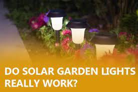 do solar garden lights really work