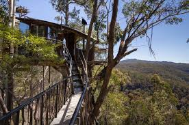 Out Of Town To The Treehouse  BroadsheetTreehouse Accommodation Nsw