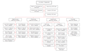 Animated Organizational Chart Disaster Recovery Plan For A Medical Center Organizational