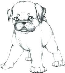 pug coloring pages printable cute dog page free colouring