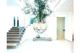 modern office plants. Large Modern Office Plants