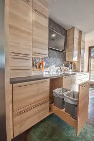 Smc Kitchen Design Kitchen Design Idea Hide Pull Out Trash Bins In Your Cabinetry