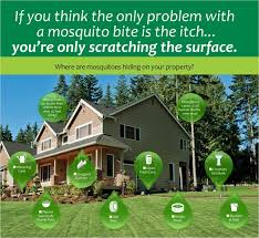 best backyard mosquito control. Beautiful Control Home And Furniture The Best Of Mosquito Control In Yard Repellent For HG  Family Backyard O