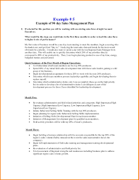 Sample Sales Plan 24 24 24 Day Sales Plan Template Free Sample Professional Template 18