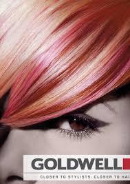 Nwr Professional Quality Pink Hair Dye