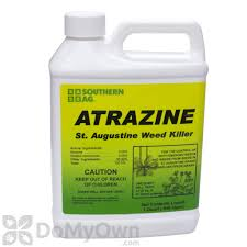 florida pest control st augustine. Fine Augustine Southern Ag Atrazine Weed Killer For St Augustine Grass Intended Florida Pest Control W