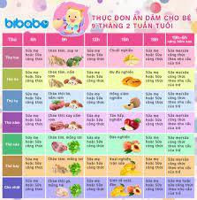 Thực đơn ăn dặm cho bé 9 tháng - Tuần 2 (Dành cho bé ăn dặm tích cực - Ngày  ăn 1-2 bữa) - bibabo.vn