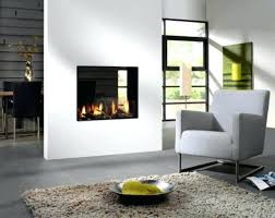 Get Inspired With Fireplace Makeover Ideas  Decor SnobHouzz Fireplace