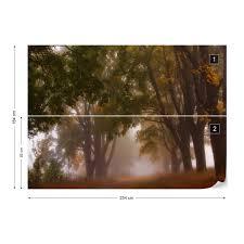 Autumn Mist Fotobehang Behang Bestel Nu Op Europostersnl