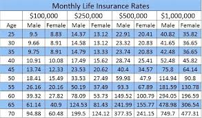 cheap term life insurance quotes