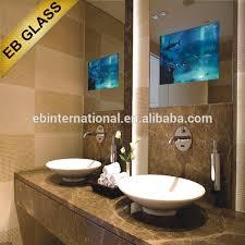 Tv Bathroom Mirror Home Design