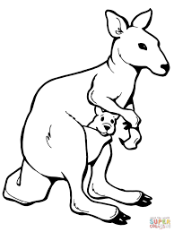 Small Picture Coloring Pages Animals Kangaroo Coloring Page Frog Coloring