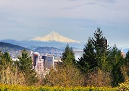 washington park is a sprawling woodland in southwest portland home to the oregon zoo portland children s museum and a series of gardens including the